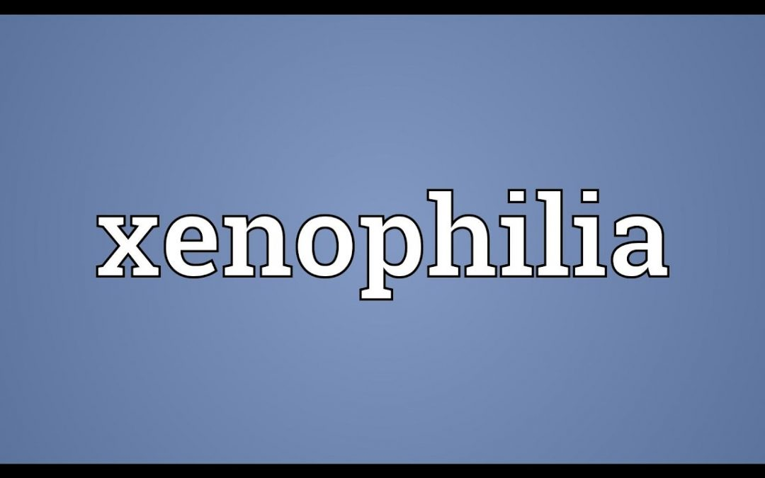 How do we turn Xenophobia into Xenophilia