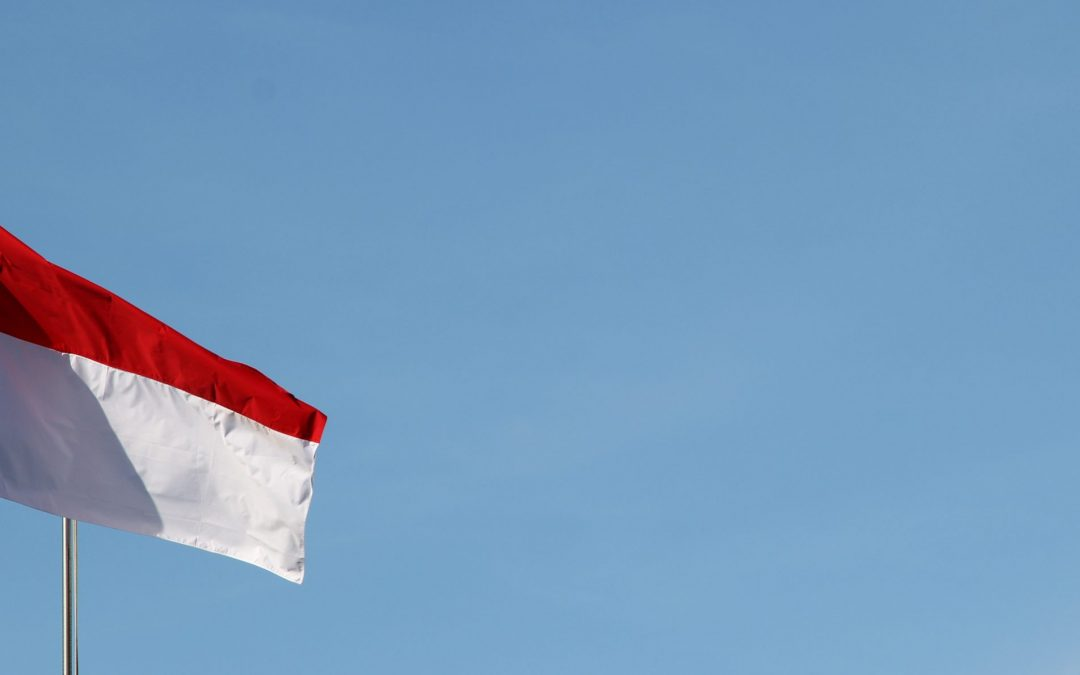 Investing in Indonesia: Education