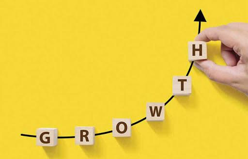 marketing plan - growth
